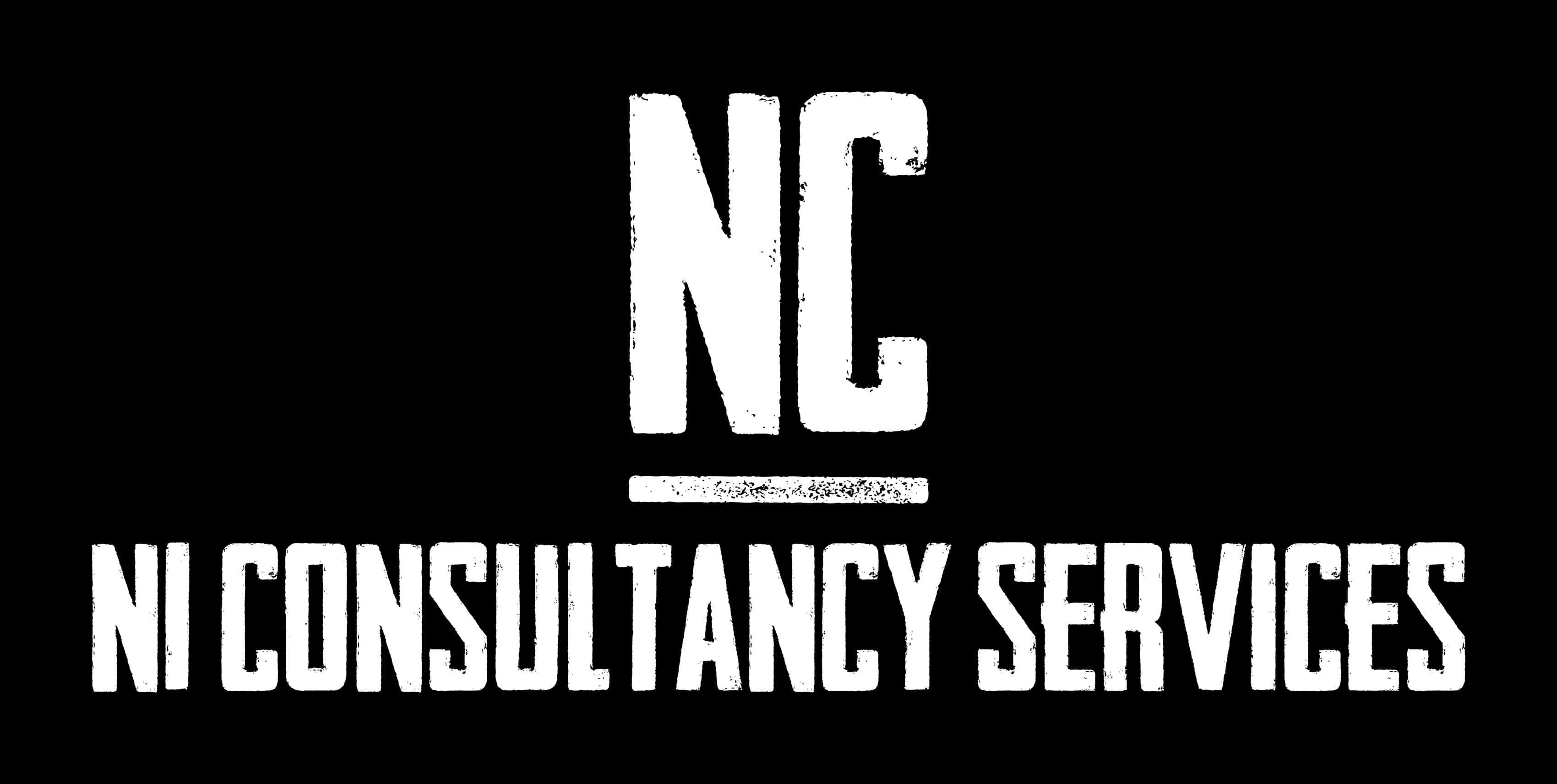 N1 Consultancy Services Ltd logo